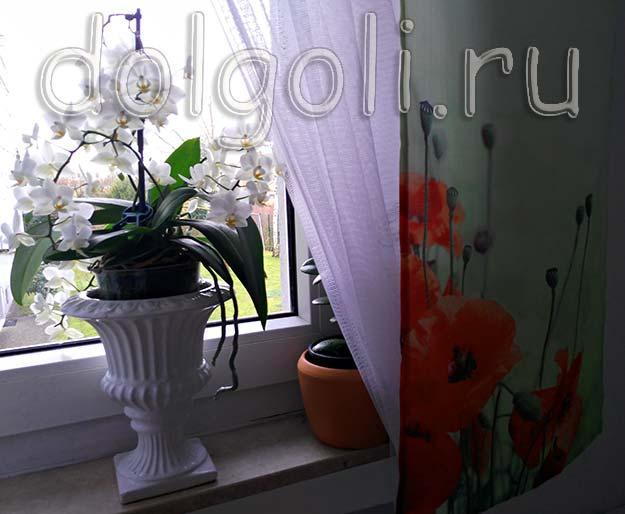 Маленькие занавески с маками на кухонное окно