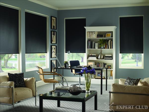 Строгие светонепроницаемые шторы в кабинете