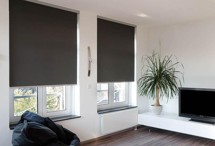 Рулонные шторы блэкаут в гостиной