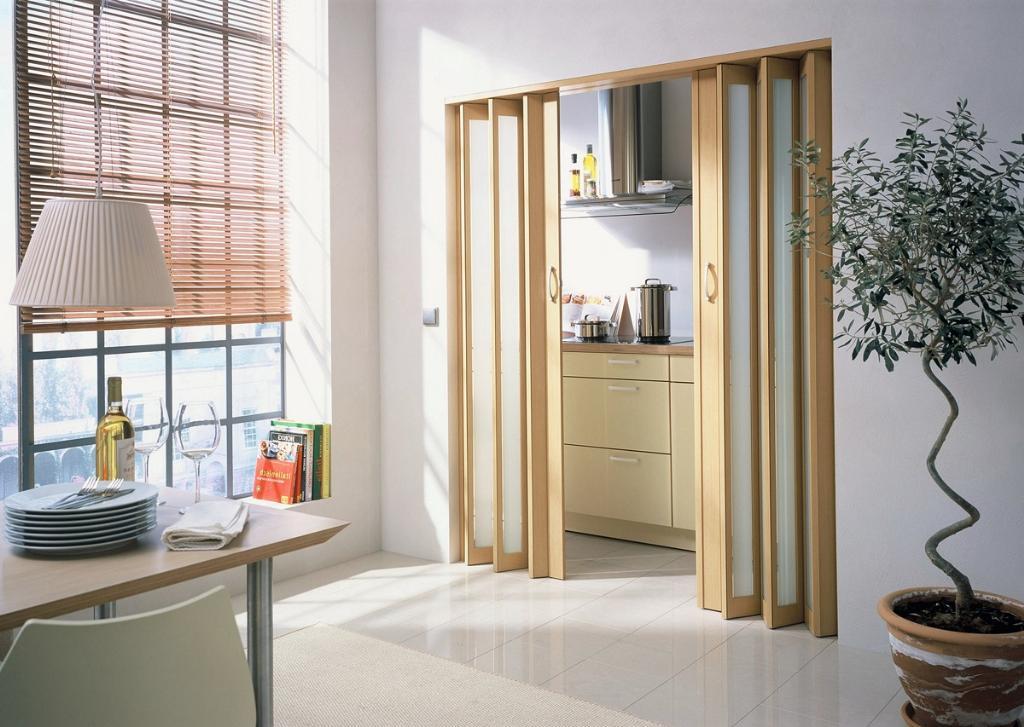 Складная дверь на кухне
