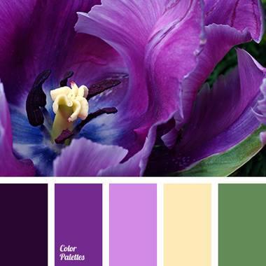 Какие шторы сочетаются с фиолетовым